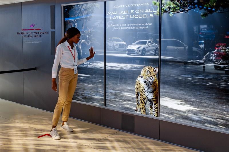 Frau und Jaguar